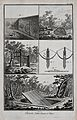 Hunting; traps and snares for catching ground-feeding birds. Wellcome V0025681ER.jpg