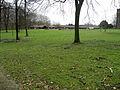 IMG 1277-Hoeschpark.JPG