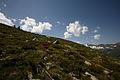 Im Hüttkar 39589 2012-06-29.JPG