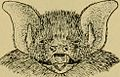 """Image from page 710 of """"Smithsonian miscellaneous collections"""" (1862) (14805016563).jpg"""