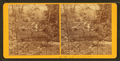 In the New Park, Phila, from Robert N. Dennis collection of stereoscopic views.png