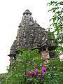 India-5782 - Flickr - archer10 (Dennis).jpg
