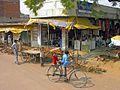 India-5858 - Flickr - archer10 (Dennis).jpg