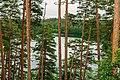 Informal meeting of environment ministers. Field trip Estonian nature (35899490105).jpg
