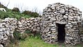 Isola d'Elba - Caprile del Monte Cenno (Evangelista Barsaglini).jpg