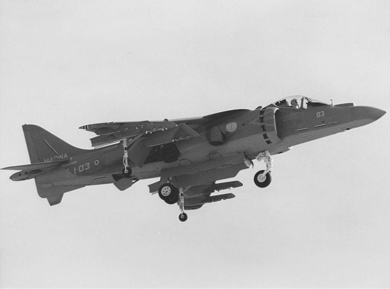 Italian AV-8B Harrier in flight 1994.jpeg