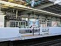 JR West Shin-Kobe Station Platform Screen Door New.jpg