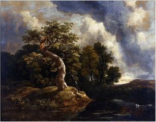 The Gnarled Oak