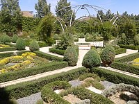 Jardín botánico del palacio de Ágreda. S XVIII.jpg