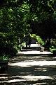 Jardin Botanico (23) (9379335264).jpg