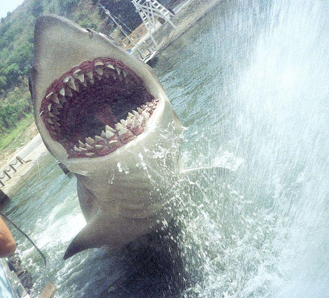 File:Jaws (5530370622).jpg