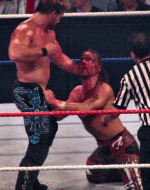 The Great American Bash (2008) - Chris Jericho attacking Shawn Michaels' damaged eye during their match