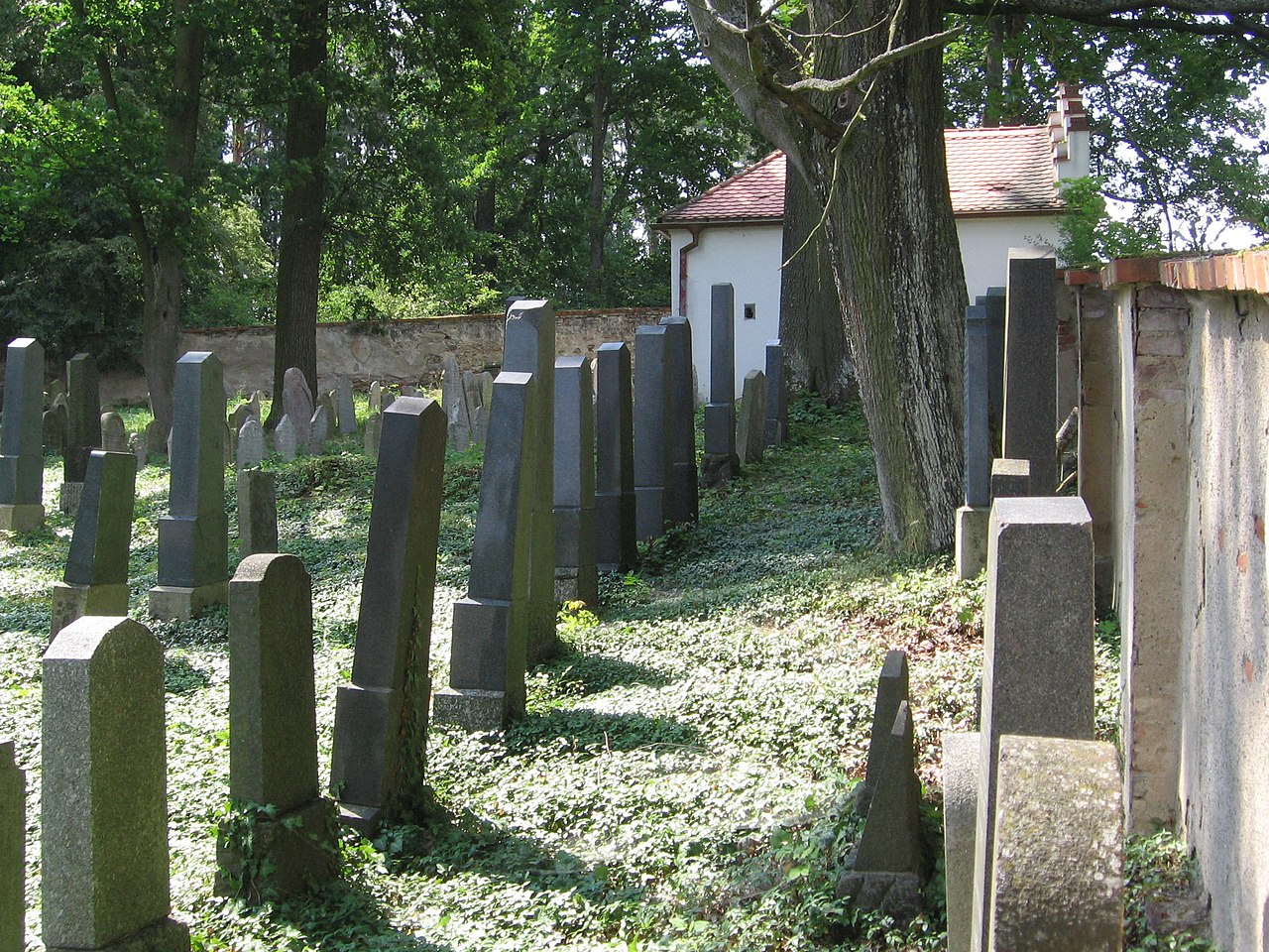 Jewish cemetery in Neznasov 2018 02.jpg