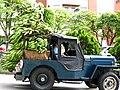 Jipao agricola by Natalia Rivera.jpg