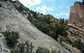 Joe Lott Tuff & normal fault & drag-folded Sevier River Formation (Joe Lott Creek Canyon, Tushar Mountains, Utah, USA) 6.jpg