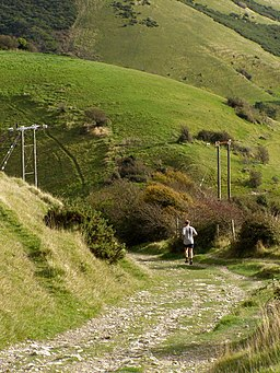 Jogger on the Purbeck Way - geograph.org.uk - 1026521