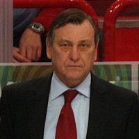 Josef Paleček - Czech national ice hockey team IHWC 2012.jpg