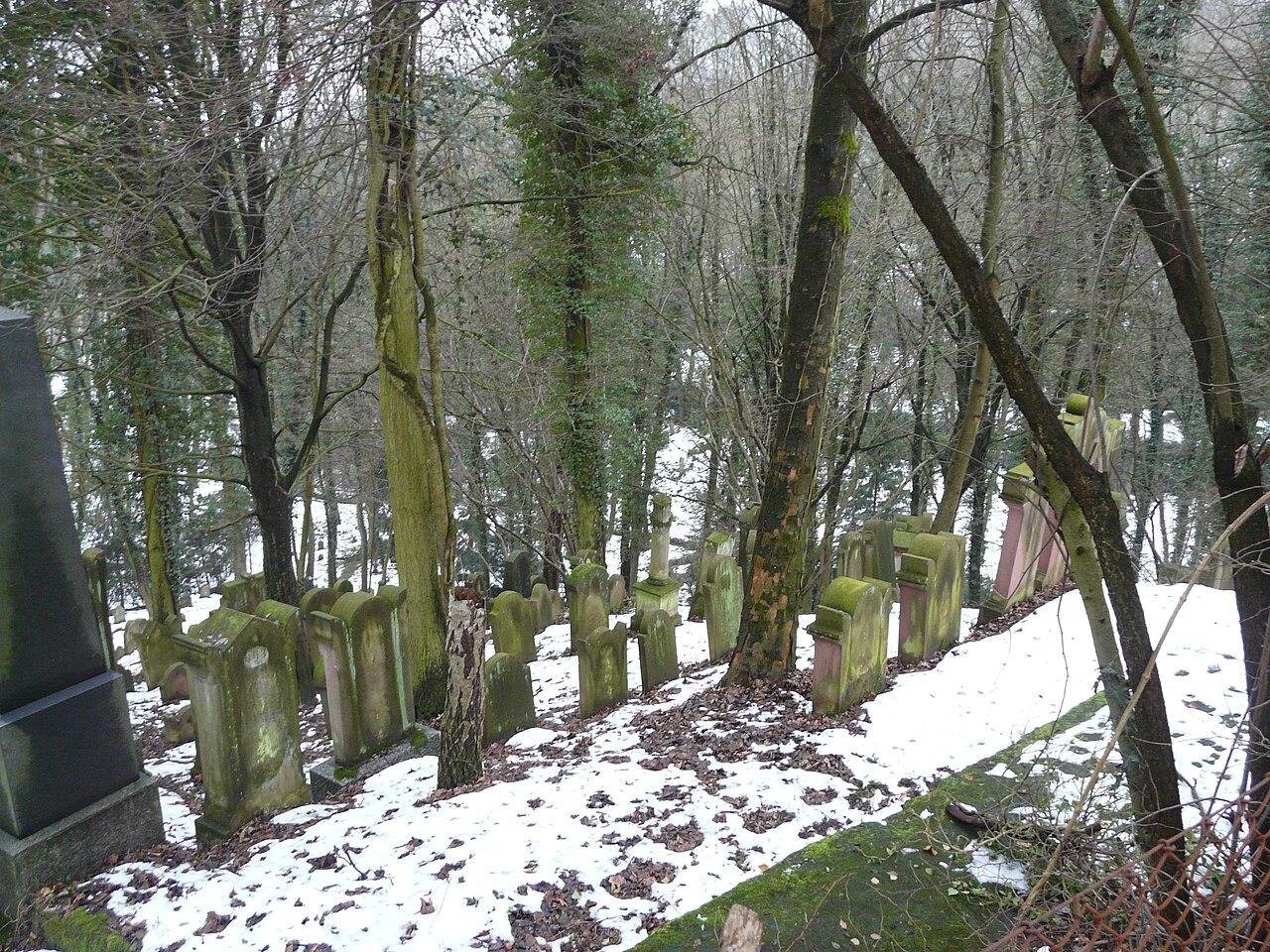 Juedischer Friedhof Hemsbach 14 fcm.jpg