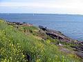 Juhannus-helsinki-2007-090.jpg