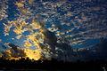 Just Clouds (3224519094).jpg