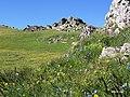 KULA CRN KAMEN - panoramio.jpg