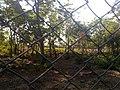 KURUMBAPATTI ZOOLOGICAL PARK, SALEM - panoramio (9).jpg