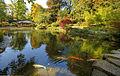 Kaiserslautern Japanischer Garten (1515119878).jpg