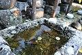 Kamakura photowalk 2012 - Sugimoto-ji temple (8188641915).jpg
