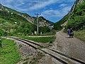 Kanjon Belog Rzava - panoramio.jpg