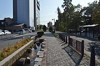 Kariya Iris Street 2013-08A.JPG