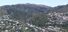 Zealandia from Tinakori Hill