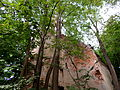 Karwiny ruina kościoła-002.JPG