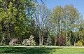 Kharkiv Botanical Garden on Klochkivska Street 03.jpg