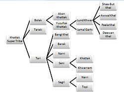 Lodhi caste