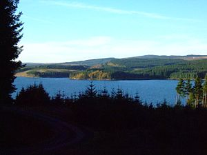 Kielder Forest - Kielder Forest and reservoir, looking north-east from Yarrow
