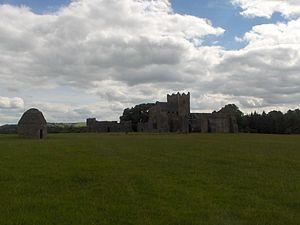 Kilcooly Abbey - Image: Kilcooley Abbey 1