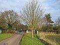 Kingston Farms driveway - geograph.org.uk - 107966.jpg