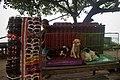 Kintamani dog puppies for sale in Kintamani, Bali, Indonesia.jpg