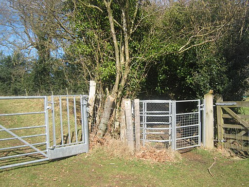 Kissing Gate on the Wealdway - geograph.org.uk - 1735388