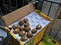 Kiwifruit from local fruit market in yuen long.jpg