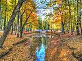 Kobrin park2.jpg
