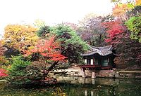 A small colorful wooden pavilion on a pond covered with lotus leaves