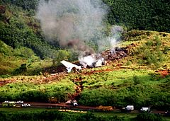 Korean Airlines flight 801 crash site.jpg
