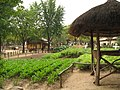 Korean Folk Village-Wondumak-01.jpg