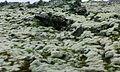 Krýsuvík3-Selatangar 007.jpg