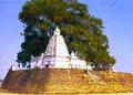 Kuleshwar mahadev (Rajim, Raipur).jpg
