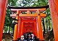 Kyoto Schrein Fushimi-Inari-taisha Torii 03.jpg