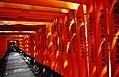 Kyoto Schrein Fushimi-Inari-taisha Torii 14.jpg