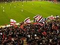 La Barra Brava flags.jpg