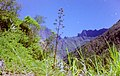 La Réunion - La Possession (Dos D'Ane).jpg